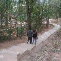 Inside Botanical Garden at Shillong