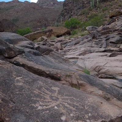 View from the petroglyphs (looking north)