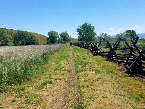 Actual Oregon Trail