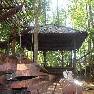 Pembangunan tangga keluar Pulau Painamo tanpa menebang pohon (9/5/17)