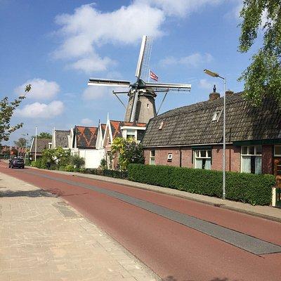 Korenmolen 't Roode Hert vanaf de Frieseweg