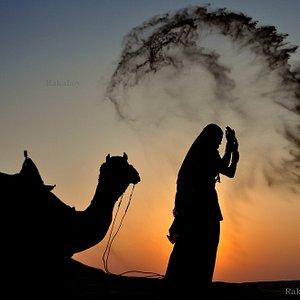 desert life in thar desert ...