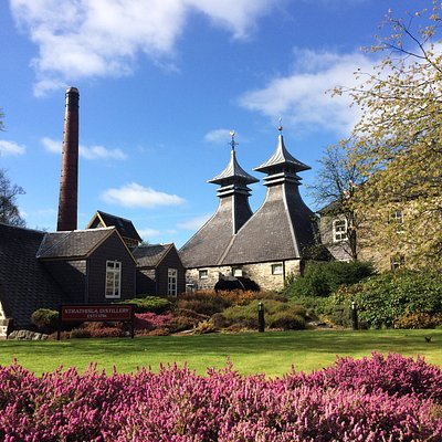 On tour in Speyside, at beautiful Strathisla Distillery