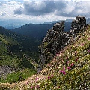 Shpytsi Mountain (1863 m asl), one of the peaks of the Chornohora mountain range. Join us!