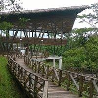 Se puede disfrutar de exelente comida despues de recorre un sendero dentro del Parque Turístico
