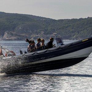 Amazing Humber Ocean Pro