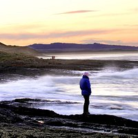 The Northumberland Coast AONB covers 135 sq kms between Berwick and the Coquet estuary.