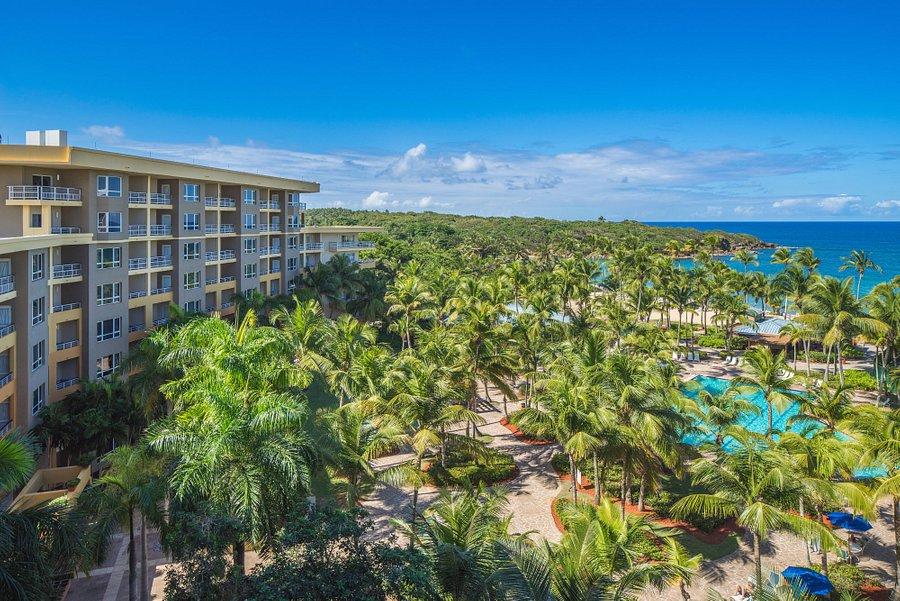 Hyatt Residence Club Dorado Hacienda Del Mar Updated 2020 Prices Resort Reviews And Photos Puerto Rico Tripadvisor