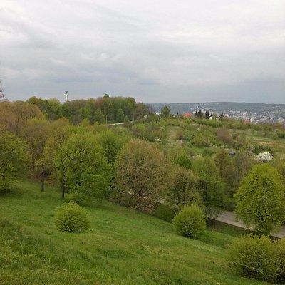 Widok-mimo niesprzyjającej pogody zieleń koi oczy.