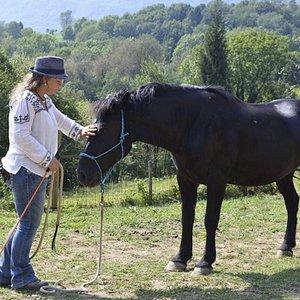 Guarigione con cavallo