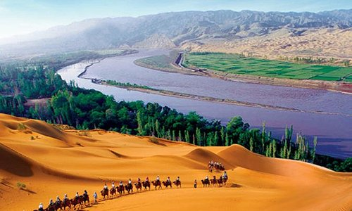One-Day Tour: Shapotou Scenic Area From Yinchuan