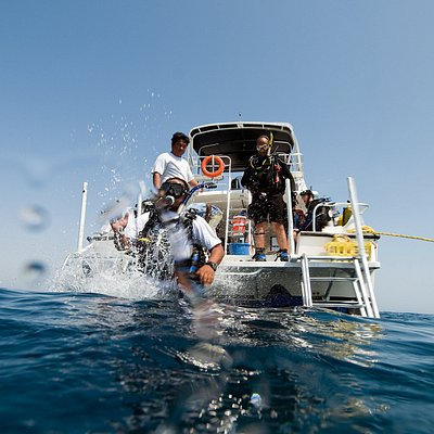 Diver make giant stride from Desert Sea Divers boat