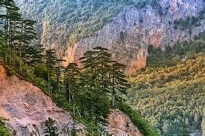Nacionalni park Durmitor , kanjon rijeke Tare