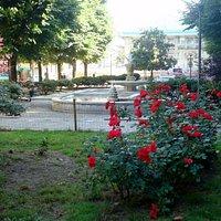 I giardini con in fondo l'Albero Falcone e Borsellino