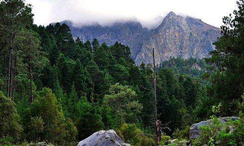 Parque Nacional La Malinche, Tlaxcala