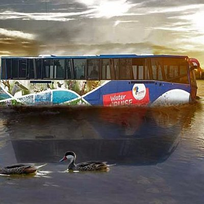 Our Water Buses are designed to wade through land and water of the mesmerizing Harike Bird Sanct