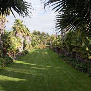 The main lawn.