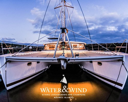Our catamaran