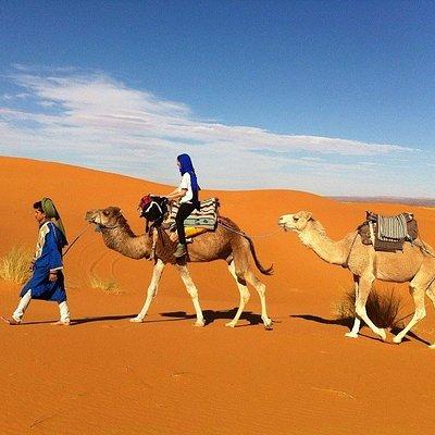 Excursion en Merzouga Desert