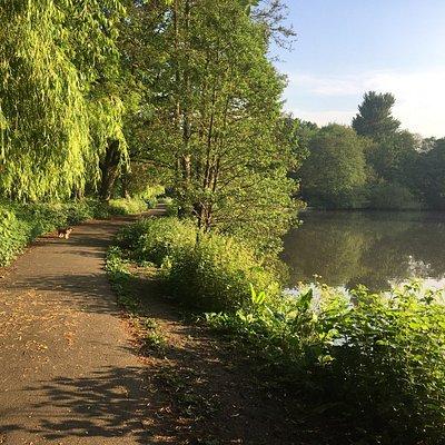 Elmdon Park