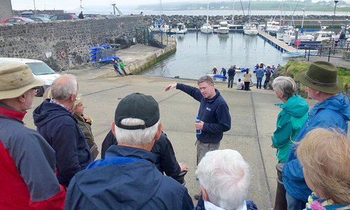 Learning the history of the harbour area