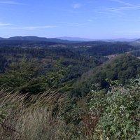 Park Krajobrazowy Sudetów Wałbrzyskich, na pierwszym planie Góra Zamkowa