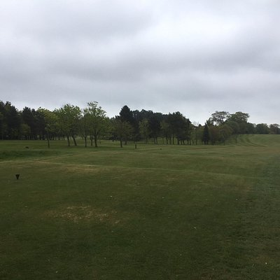 view from tee