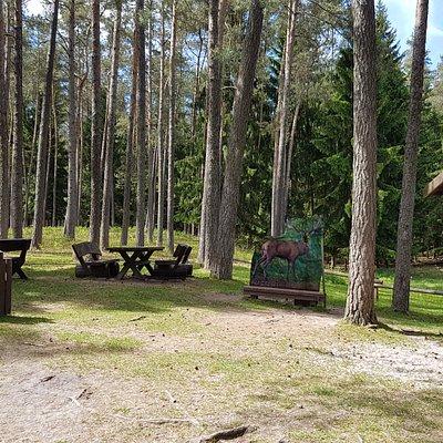 Wildgehege Hufeisen  / Veldensteiner Forst