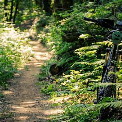 Un tratto del sentiero di Santa Lucia, adatto sia alle MTB che agli amanti del Trail Running