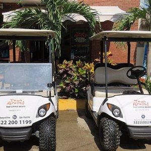 Fuel Injection and Regular fleet. Yamaha Gas Golf Carts