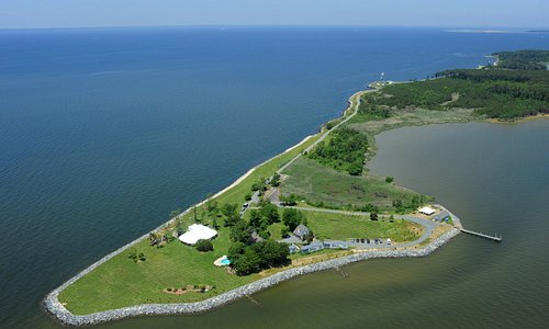 Ariel View of Black Walnut Point