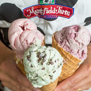 Which of our 34 flavours will you choose?