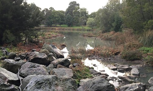 huntingdale wetlands