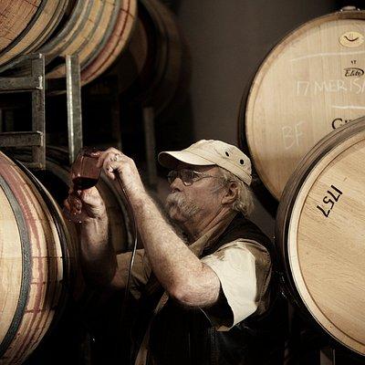 Vintage 2017 barrel tasting