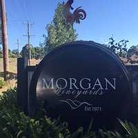 Morgan Vineyards 30 Davross Court Seville