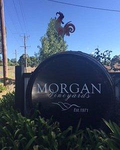 Morgan Vineyards 30 Davross Court Seville