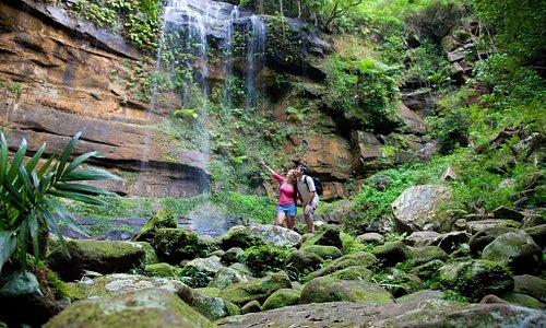 Gap Creek Falls, Watagan National Park