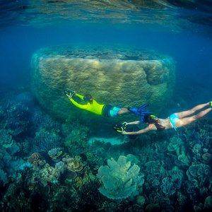 Seascooter tours $60 per person includes snorkel gear and wetsuits. Tours operate daily.