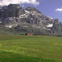 l'ultima neve di primavera in un paesaggio che sembra alpino