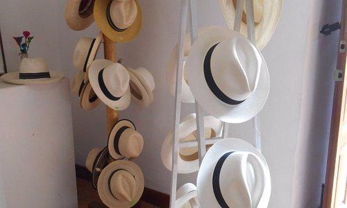 Accueil Casa del sombrero