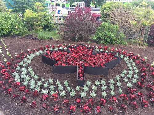Flower bed ready for Canada Day