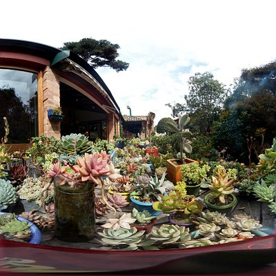 Una muestra del jardin en 360