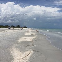 Great beach with lots of shells!!