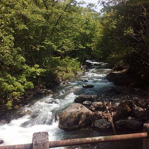 照葉狭の橋の上からの川の流れ