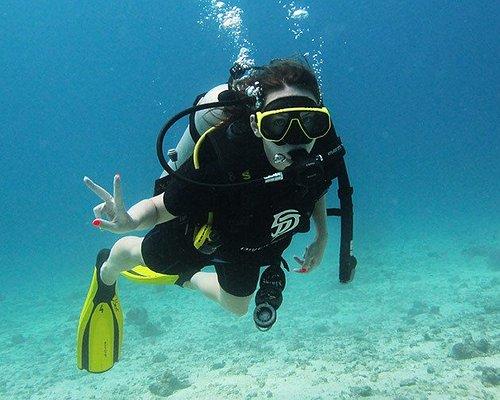 Diver DIVERSAINT