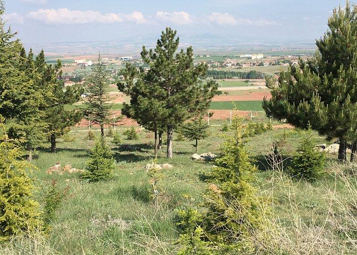 View from Çilehane