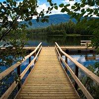 Ross lake's new dock