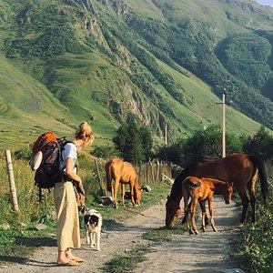 Kazbegi. ('Closer to the great Caucasus' tour)