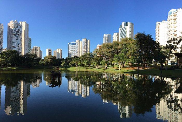 Reflexo dos prédios que rodeiam o Parque Flamboyant.