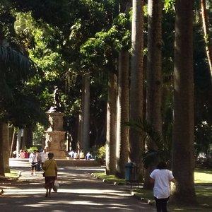A alameda principal do jardim do Palácio do Catete